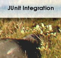 JUnit Integration